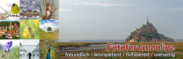 http://www.fotoforumonline.de